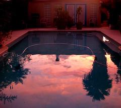 """When The Deep Purple Falls Over Sleepy Garden Walls"" (Chic Bee) Tags: flowers buds justforme pool reflection sunset desert sonorandesert oasis pink tucson arizona deeppink summermonsoon monsoon"