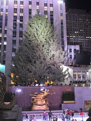 2017 Christmas Tree Rockefeller Center before lighting 4246 (Brechtbug) Tags: 2017 christmas tree rockefeller center before lighting 11252017 nyc 30 rock new york city standing up above ice rink with snow shoveling workers skating holiday decoration ornaments night lights lites light oversize load ornament prometheus gold mythological statue sculpture fountain fountains post thanksgiving