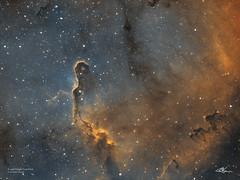 IC1396A_Hubble_2017-11-17 (MarkLB57) Tags: ic1396 astronomy astrophotography azeq6gt zwoefwelectricfliterwheel zwoasi1600mmcool nebula cepheus ha oiii meade6000115mmrefractor marklb57 elephanttrunk