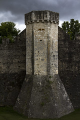 Tower (Michel Couprie) Tags: france europe provins tower tour remparts fortress forteresse stone medieval clouds architecture canon eos 7d couprie