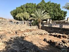 3 - Kafarnaum