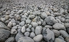 Pebble Shot (Andy.Gocher) Tags: andygocher canon100d europe uk wales southwales southerndown pebbles texture