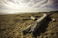 A Beach of One's Own (storymakr) Tags: batis2818