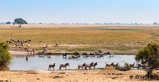 Botswana_2017-11
