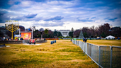 2017.12.12 National Menorah, Washington, DC USA 1376