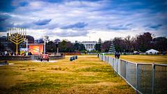 2017.12.12 National Menorah, Washington, DC USA 1376