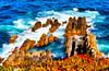 Cabo Sardão | Cape Sardão | Cap Sardão | Capo Sardão (António José Rocha) Tags: portugal alentejo cabo litoral cabosardão costa rochas água oceano atlântico mar oceanoatlântico cores azul espuma