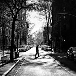 Pedestrian crossing - New York - Black and white street photography thumbnail