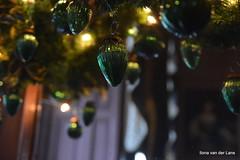 Groen! (Ilona67) Tags: vaassen kasteel canneburgh binnen kersttijd groen tak bal licht