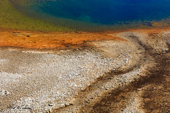 Saphire Pool_27A0583 (Alfred J. Lockwood Photography) Tags: alfredjlockwood nature landscape abstract color shapes patterns texture geothermalpool geothermalrunoff midwaygeyserbasin saphirepool morning summer yellowstonenationalpark wyoming