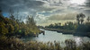 Autumn afternoon (DC P) Tags: autumn afternoon waterfront water watercourse waterscape tree trees travel trekking cloud clouds cloudy sun sunset sunrise sunny sunday wind sony carl zeiss 35mm a7rii color angle beautiful bej colors colours colorful dof depth digital explore fantastic gold hdr holland landscape light nature ngc netherlands outdoor outside pov panorama reflection reflections serene wideangle wide exposure mystic