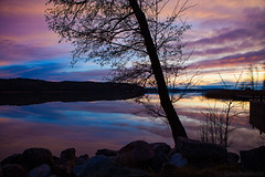 Silhouettes & reflections (Joni Mansikka) Tags: autumn nature outdoor seabay calm colours reflections silhouettes trees branches stones sky clouds paimio suomi suomi100 finland finland100 landscape canonef2470mmf28lusm