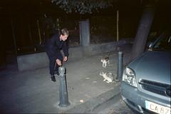 (Just A Stray Cat) Tags: cats cat stray feline gato kitty kittens mju flash street urban night 28mm kodak ektar 100 ektar100 kodakektar kodakektar100