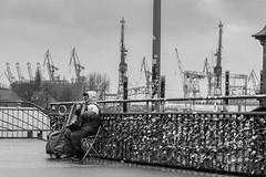 Love Locks and the old Musician, S-Bahn Landungsbruecken Hamburg (EmoHoernRockZ) Tags: 2017 alphaemo autum de deutschland emohoernrockz fall germany hamburg landungsbrucken lovelock lovelocks lovepadlock musician nychennecom port landungsbrücken