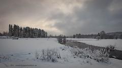 20171129001164 (koppomcolors) Tags: koppomcolors winter vinter värmland varmland snö snow sweden sverige scandinavia