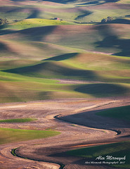 297A5917_960 (Alex Mironyuk) Tags: 2017 abstract barn butte colfax landscape palouse phototour sunset tree washington waterfalls canola car field house panorama raps steptoe sunrise tractor wheat