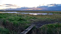 To the Marshes (_J @BRX) Tags: ness neston deeestuary cheshire england uk november 2017 water cloud sky dusk walkway path marsh reflection sunset hills wales