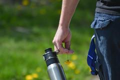Water Bottle and Dandelion (Vegan Butterfly) Tags: outside outdoor city urban summer people person hand water bottle flower dandelion