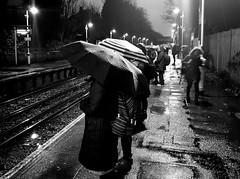 "Commuter misery <a style=""margin-left:10px; font-size:0.8em;"" href=""http://www.flickr.com/photos/12425883@N02/25108510178/"" target=""_blank"">@flickr</a>"