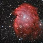 The Monkey Head Nebula - NGC2175 thumbnail