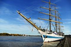 Bordeaux - STS Mir (Le.Patou) Tags: bordeaux ship sailor navy navire bateau marine boat sail sailing russian russia