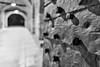 Rivets (saebaryo) Tags: canoneos5dmarkiii canon 5d3 5diii canon2470mmf28l 2470mm belgrade serbia kalemegdan belgradefortress