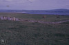 La Hinch from cliff of Moher. Burren (Mary Gillham Archive Project) Tags: 17618 burren countyclare ireland landscape