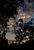 Twilight (Padmacara) Tags: australia outback g11 hughriver camping sleepingout