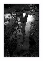 Après l'automne . . .Arrive l'hiver  HSS (nickylechatreux) Tags: reflet paris automne eau monochrome slider sunday hss