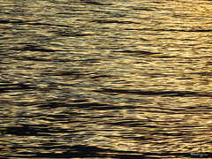 Golden abstract - Abstrait doré (monteregina) Tags: abstract dawn sunrise file:name=nb201710164740 québec canada ripples ondulations river abstrait eau water watersurface surfacedeleau patterns nature naturetextures naturalabstractions abstraitnaturel waterabstract sparklingwater scintillement artofwater golden doré ripplesofgold ondulationsdorées ondulationsréflectives reflectivesripples réflexionsabstraites réflexions minimal wasserabstrakt goldenwater eaudorée shimmeringgold orscintillant