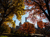 Thanksgiving Day in Central Park (Feldore) Tags: newyork central park fall autumn colours skyscrapers feldore mchugh em1 olympus 1240mm frame framed autumnal landscape