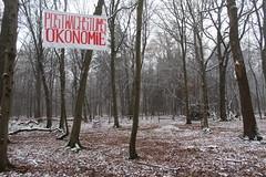 IMG_1994 (ihambi) Tags: hambi hambacherforst hambach hambacher kohleprotest earthfirst kohle occupation forestoccupation forest co2 coal climatechange climatecamp climate braunkohle breakfree solidarity