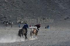 30101805 (wolfgangkaehler) Tags: 2017 asia asian centralasia mongolia mongolian westernmongolia ulgii ölgii bayanulgiiprovince altaimountains altaymountains altaymts goldeneaglefestival people person kazakh competing competition competitor game games horse horseriding horseback horsebackriding horsebackrider traditionalgame kukhbar fighting goatskin kokpar