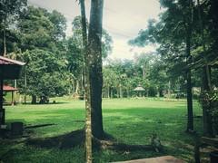 Templer Park Waterfall - Templer Park - http://4sq.com/kjpKz1 #travel #holiday #travelMalaysia #holidayMalaysia #green #waterfall #Asia #Malaysia #selangor #rawang #旅行 #度假 #马来西亚度假 #马来西亚旅行 #绿色 #瀑布 #nature #大自然 #亚洲 #马来西亚 #雪兰莪 #发现大马 #FoundinMalays