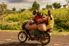 Bike Taxi (Rod Waddington) Tags: africa african afrique afrika äthiopien ethiopia ethiopian ethnic etiopia ethnicity ethiopie etiopian omo omovalley outdoor motorbike passengers group konso tribe traditional tribal road taxi trees maringa culture cultural