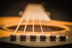 guitar (ein Blickwinkel) Tags: musicalinstruments macromondays taylor