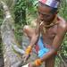 In the Mentawai rainforest - softening the bark