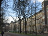 Houses and trees on Lange Vijverberg, The Hague, Netherlands (Paul McClure DC) Tags: thehague denhaag nederland thenetherlands sgravenhage southholland zuidholland nov2017 architecture historic