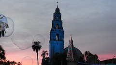 Joy to the World (Rand Luv'n Life) Tags: odc our daily challenge world joy san diego california tower balboa park evening sunset bubbles blue palm tree christmas lights outdoor peace
