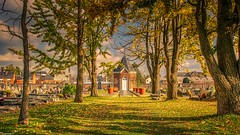 Cimetière de Belgrade - 4076 (YᗩSᗰIᘉᗴ HᗴᘉS +11 000 000 thx❀) Tags: cimetière cemetery belgrade belgium europa aa be bel europe 3exp hdr hensyasmine yasminehens