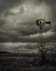 Leona Texas