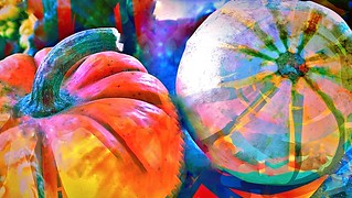 Gourds like Gearshifts