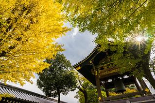 Nishihongan-ji,Kyoto,Japan