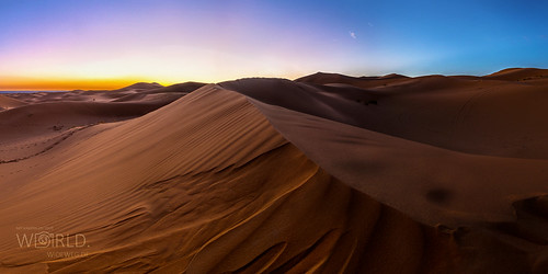 Sahara in der Morgendämmerung