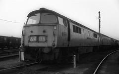 Western Lord at Westbury (Deadman's Handle) Tags: 1047 d1047 westernlord westbury blackandwhite monochrome 1976