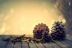 Otoñal.... (JACRIS08) Tags: otoño navidad piñas bodegon stilllife