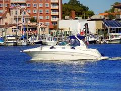 Sheepshead Bay. Fancy Speedboat (dimaruss34) Tags: newyork brooklyn dmitriyfomenko image sky trees sheepsheadbay yacht yachts water speedboat building buildings