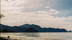 Casual Paradise 3.0 | Nikon FE2 | Nikkor 50mm (f1.8) (IG @ Meandergraph) Tags: thailand krabi bangkok chiangmai phuket kohsamui travel asia southeastasia streetphotography film analog 35mm filmphotography nikon nikonfe2 nikkor50mm 50mm