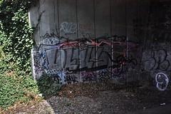 Dtails - Lewisham (GRAFFLIX (grafflix.co.uk)) Tags: graff graffiti dtail