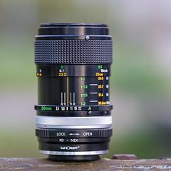Canon FD 50mm ƒ/3.5 Macro S.S.C. (.: mike | MKvip Beauty :.) Tags: sony⍺7markii sony⍺7ii sonyilce7m2 sonyalpha7m2 sonyalpha sony alpha emount ⍺7ii ilce7m2 sigmaex150mmƒ28apomacro sigma150mmƒ28macro metabonesefemounttsmart metabones eftoemount canonfd50mmƒ35macross canonfd 50mmƒ35macro 50mm canon vintagelens vintageprime primelens prime manual manualondigital manualexposure handheld lens lensporn gearshot availablelight naturallight backlight backlighting wörthamrhein germany europe mth mkvip sigmaex150mmƒ28apomacroexdgoshsm metabonesefemounttsmartadaptermarkiv canonfd50mmƒ35macrossc